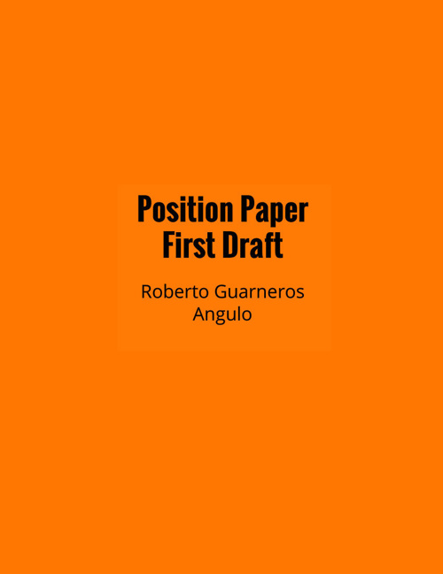 UN Position Paper First Draft