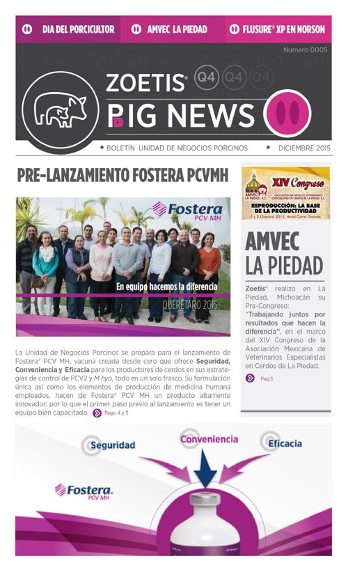 Pig news_ v2
