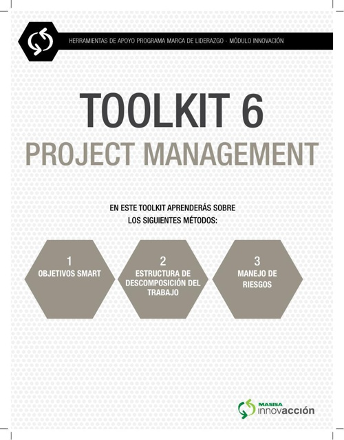 PROJECT MANAGEMENT (TOOL KIT 6)