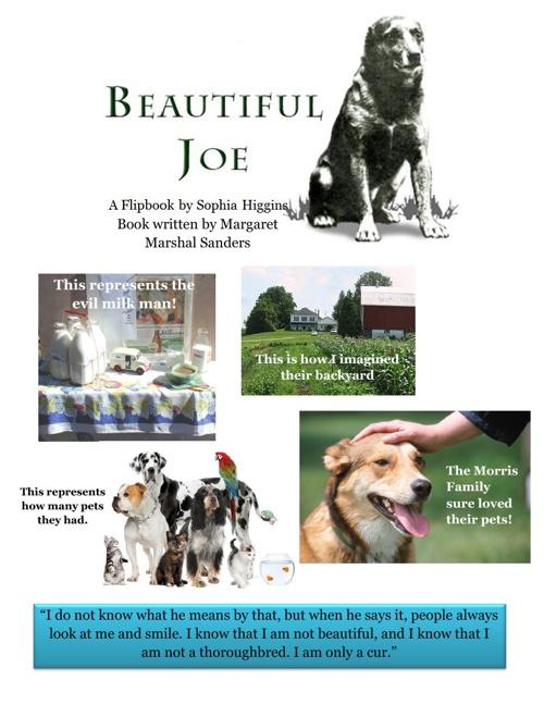 Beautiful Joe- Flip Book Project