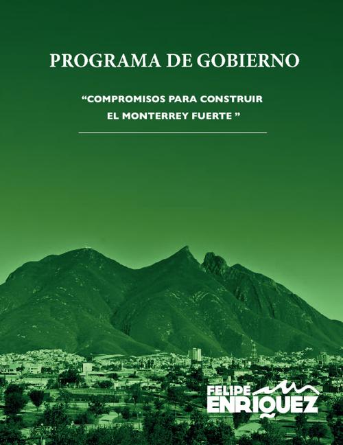 Programa de Gobierno de Felipe Enríquez