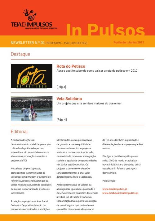 Newsletter TDI 01