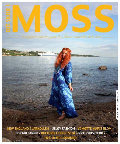 Det Skjer i Moss sommeren 2015