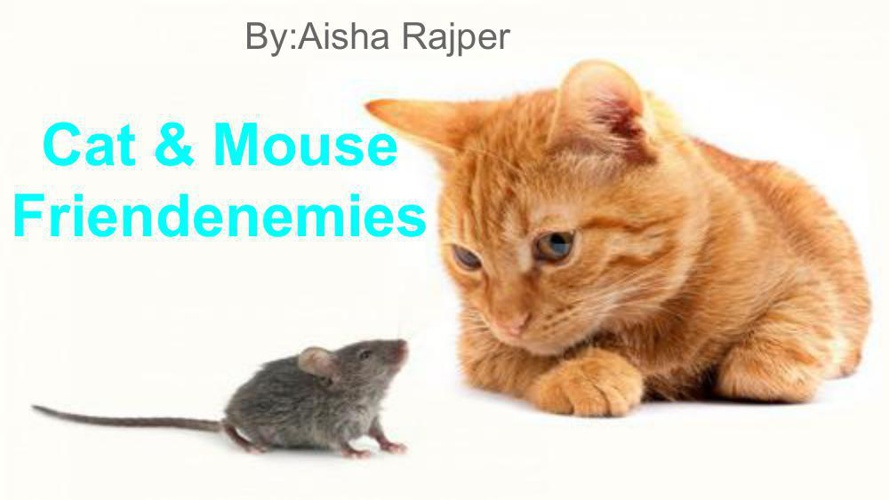 Childerns Book_Cat&Mouse Freindenmies