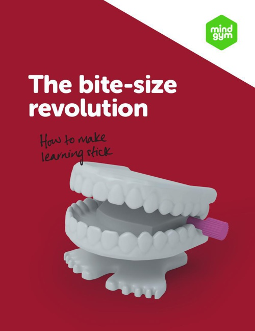 The bite-size revolution: how to make learning stick [UK]