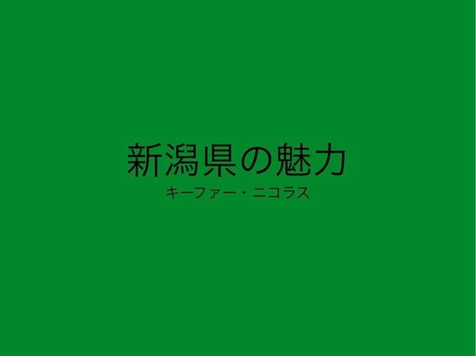 新潟県 パンフレット