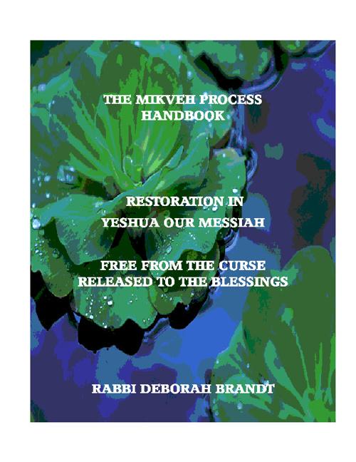 The Mikveh Process Workbook