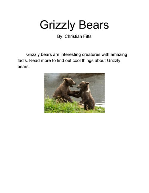 Grizzly Bears by Christian