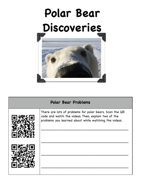 Polar Bear Discoveries