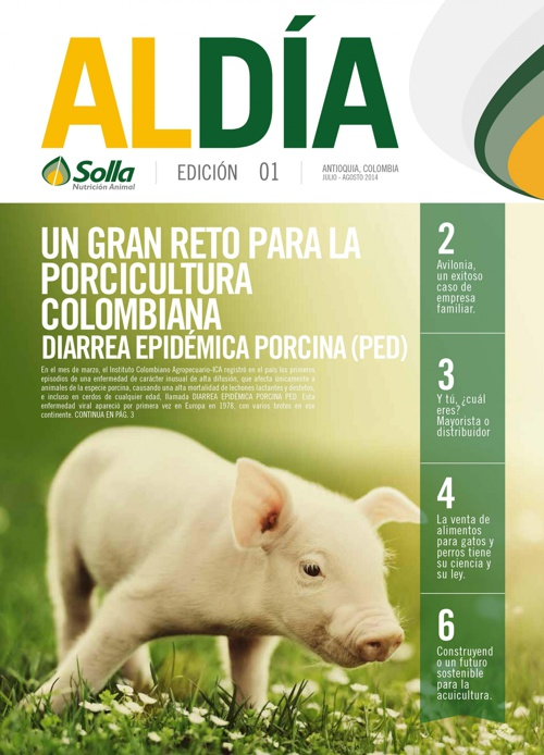 Revista Solla