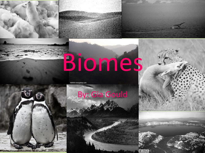 Biome Book: Gia Gould