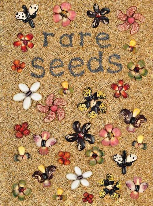 2015 Good Seed Final Final Catalog