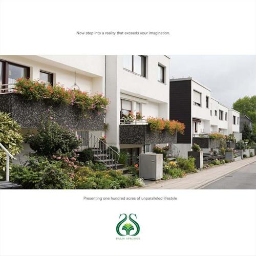 Palm Spring Brochure