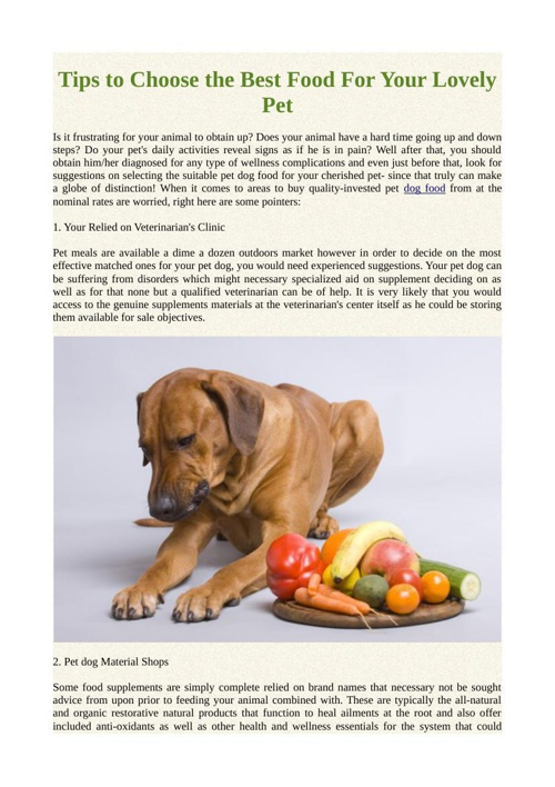 Tips to Choose the Best Food For Your Lovely Pet
