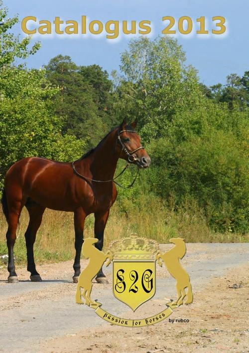 RUBCO - S2G catalogue horses 2013
