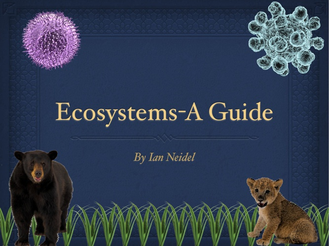 Ecosystems-A Guide