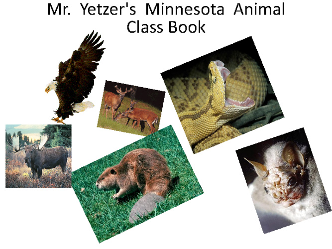 Mr Yetzer's Class Minnesota Animal Book