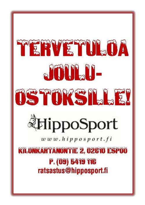 HippoSportin joulukalenteri