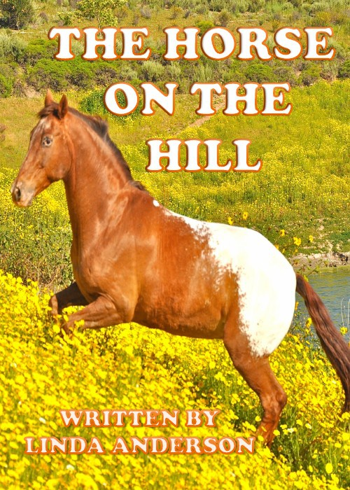 Horse on Hill  a true story with photo album by Linda Anderson
