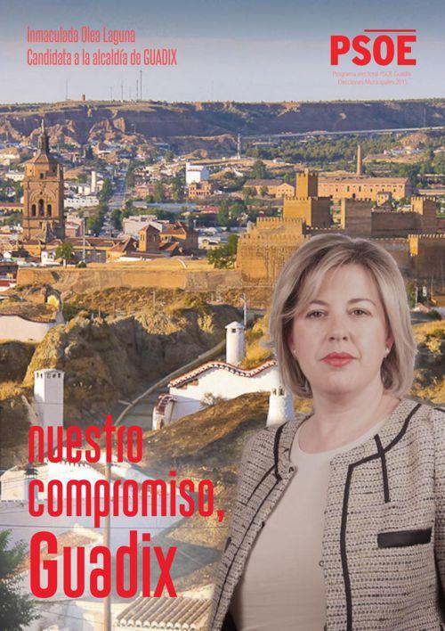 PSOE GUADIX INMA OLEA 2015