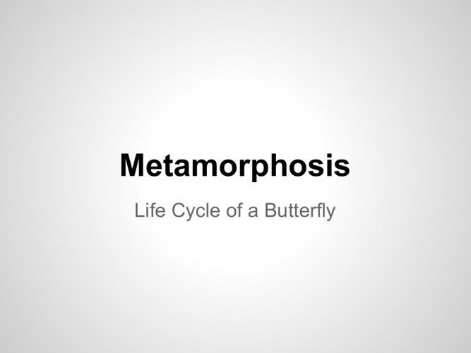 Metamorphasis