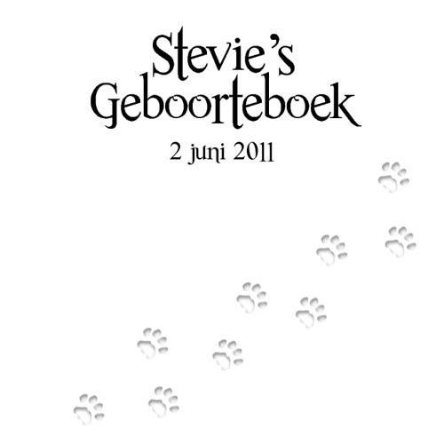 Stevie's Geboorteboek