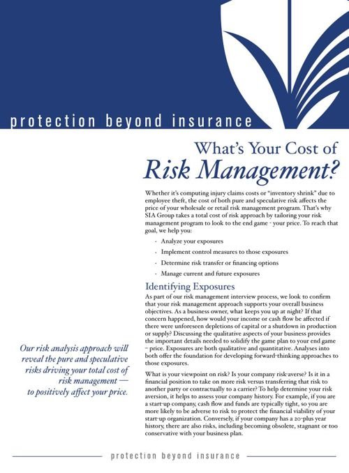 What's Your Cost of Risk Management