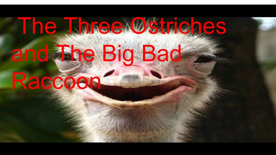 the three ostriches