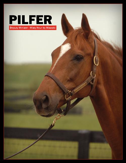Pilfer May 2012