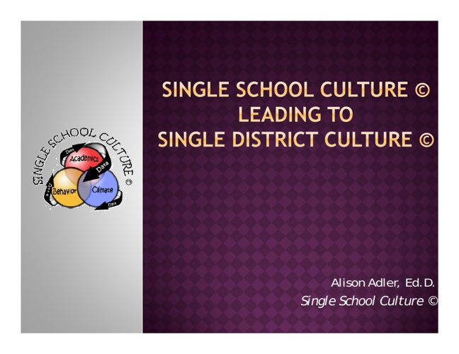 Single School Culture © Overview