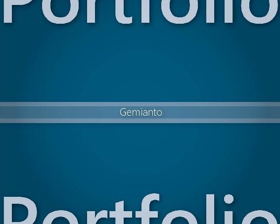 Gemi's Portfolio