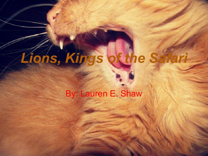 Lions, Kings of the Safari
