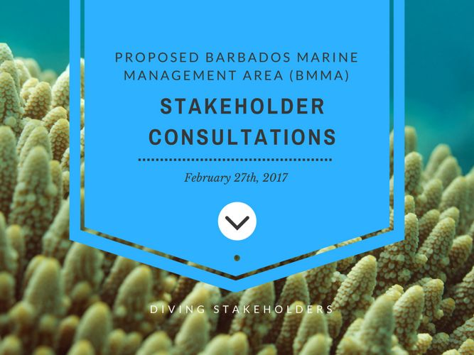 Proposed BMMA Stakeholder Consultation Presentation_270217