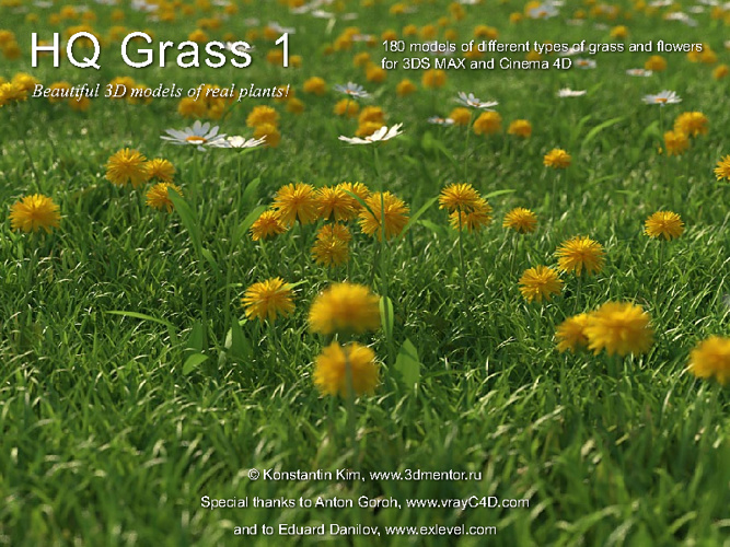 01_3DMENTOR - HQ GRASS VOL.01