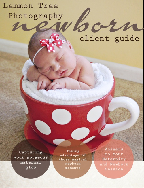 Maternity/Newborn/Stages