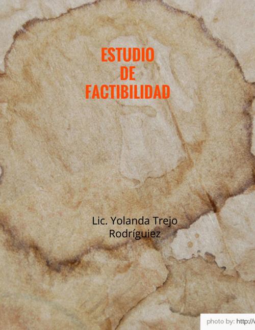ESTUDIO_DE_FACTIBILIDAD