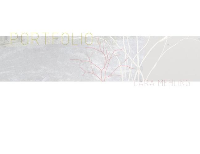 Portfolio Fall 2012 Mehling