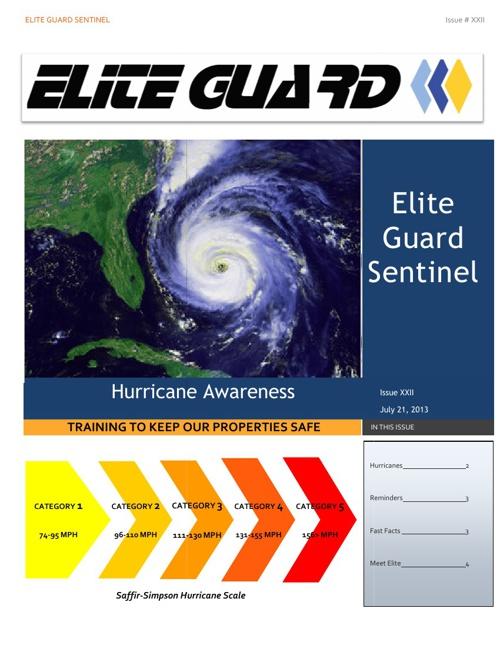 Elite Guard Sentinel July 2013