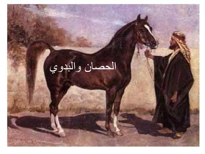 قصة الحصان والبدوي