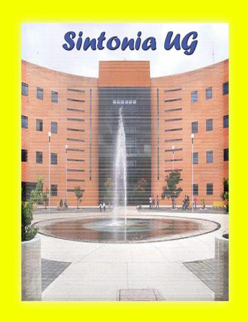 SINTONIA UG