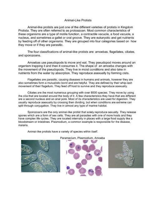 Protist & Fungi - 5th