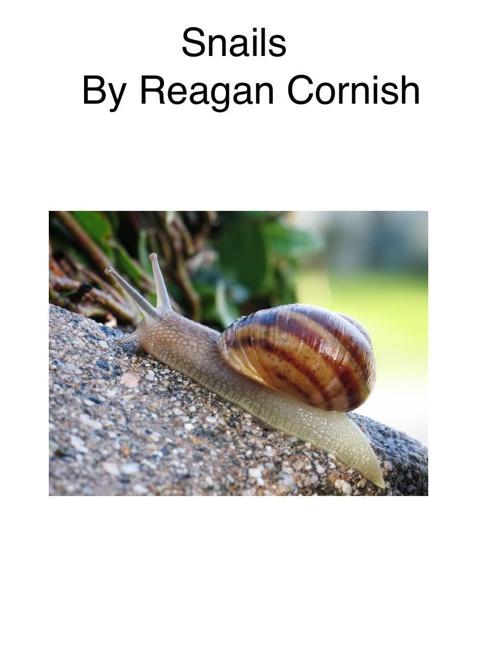 RCresarch snails