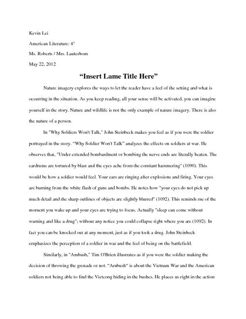 Kevin Lei Essay