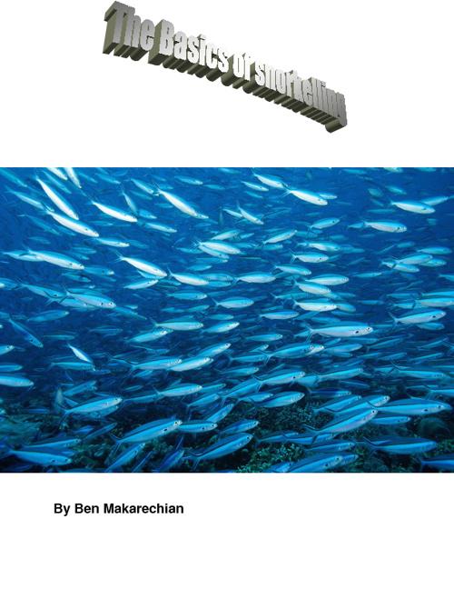 Ben-Snorkeling