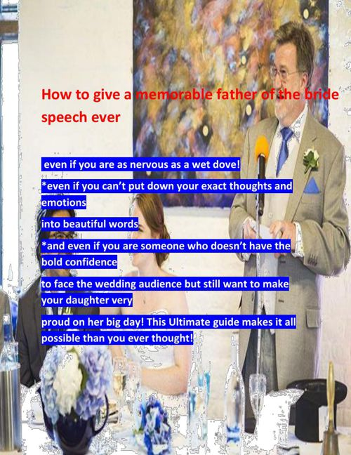 FINAL FLIPPING FATHER OF THE BRIDE SPEECH BOOK
