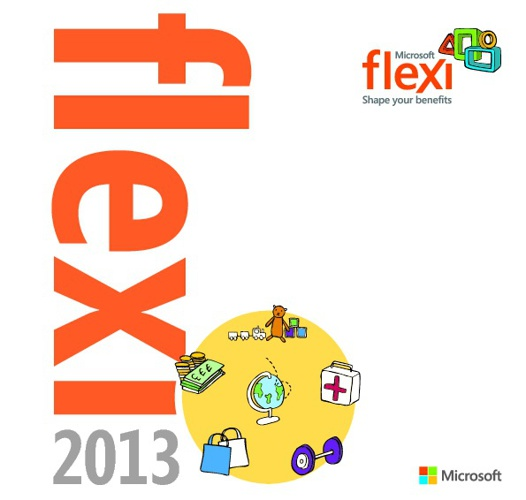 Microsoft Flexi eBook 2013