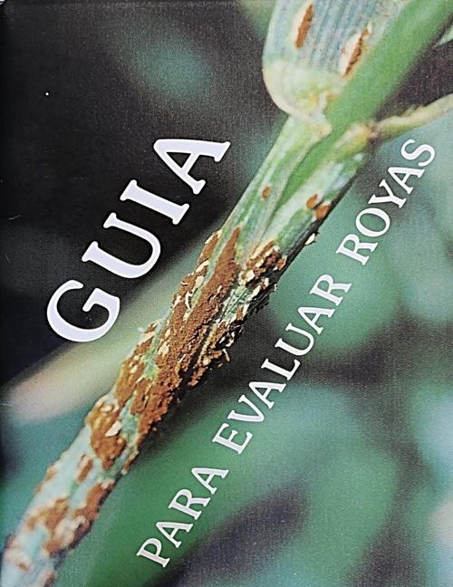 GUIA PARA EVALUAR ROYAS