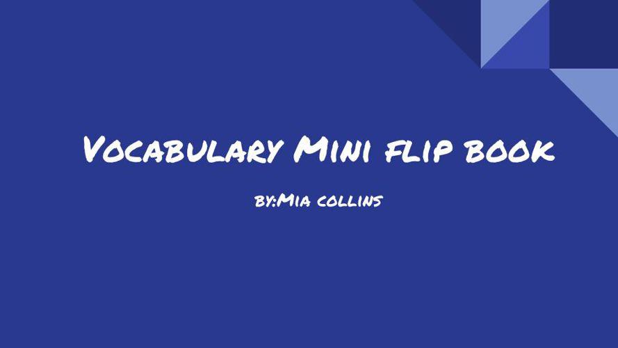 Vocabulary Flip Book By:Mia C