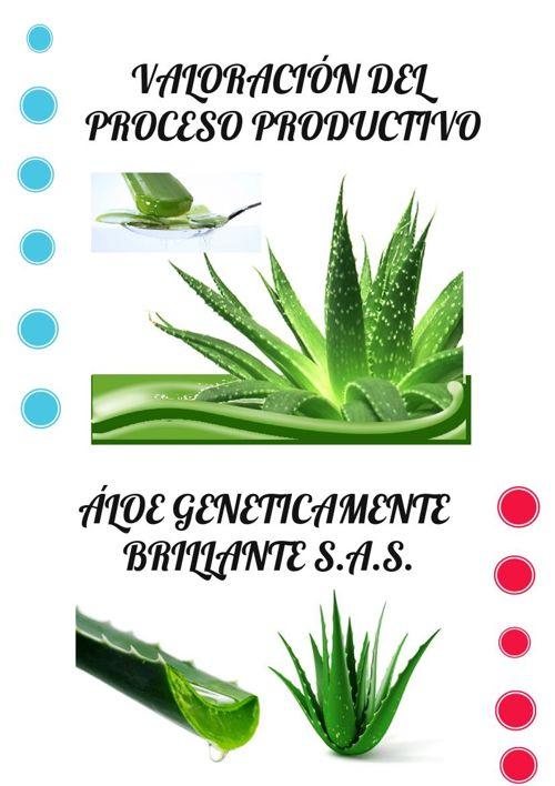 INFORME DE PLAN DE PRODUCCION (2)