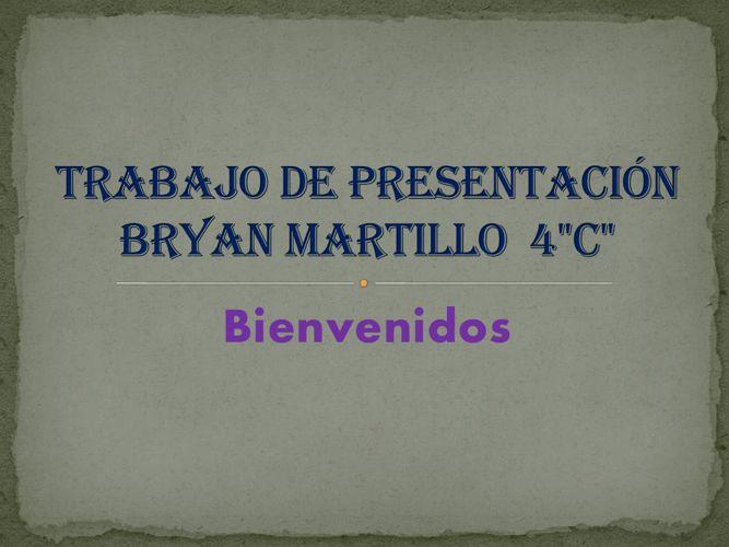 Trabajo de presentación Bryan Martillo